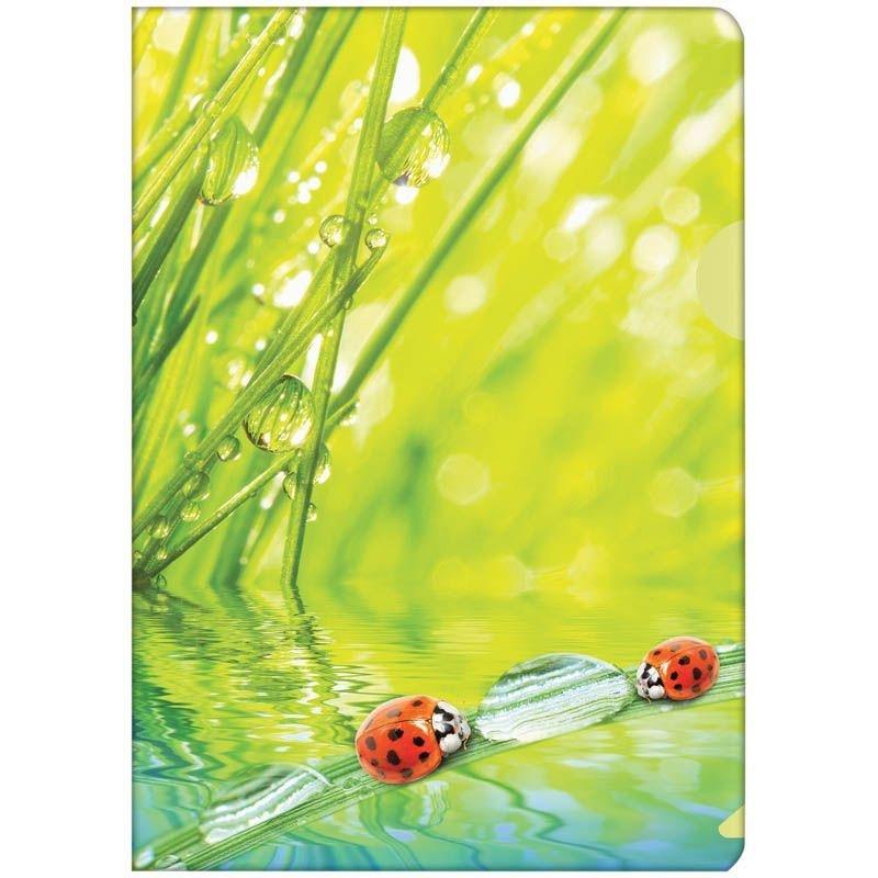 Папка-угол (карман) Berlingo Ladybird 0,18мм рисунок