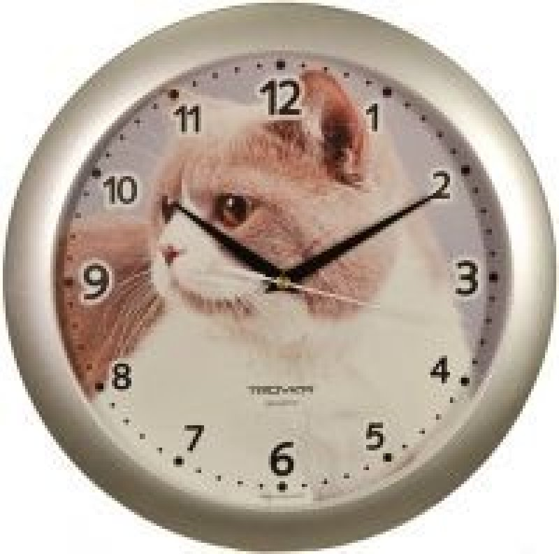 Часы настенные В-Тройка 11170192 круг кошка 290мм