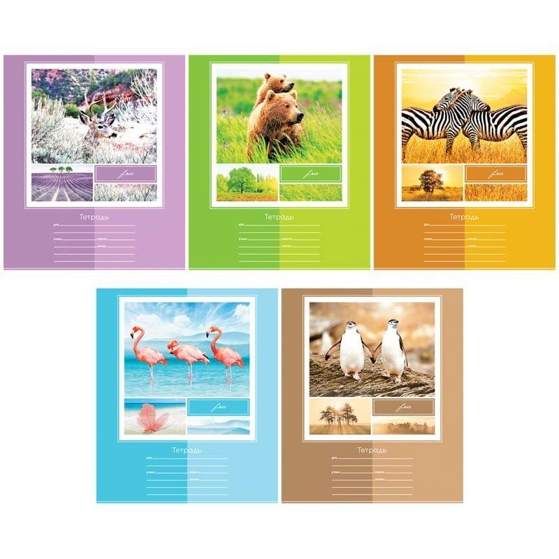 Тетрадь 12л линия Животные В мире животных