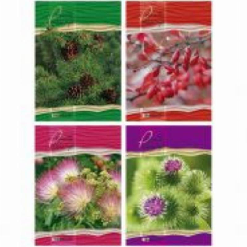 Тетрадь 160л А4 Nature Macro клетка гребень твердый переплет