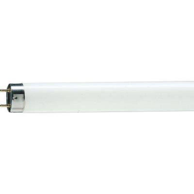 Лампа люминисцентная Philips 1200мм G13 36Вт холодный дневной свет