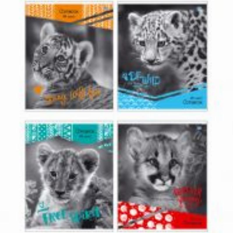 Тетрадь 48л Wild kitten линия
