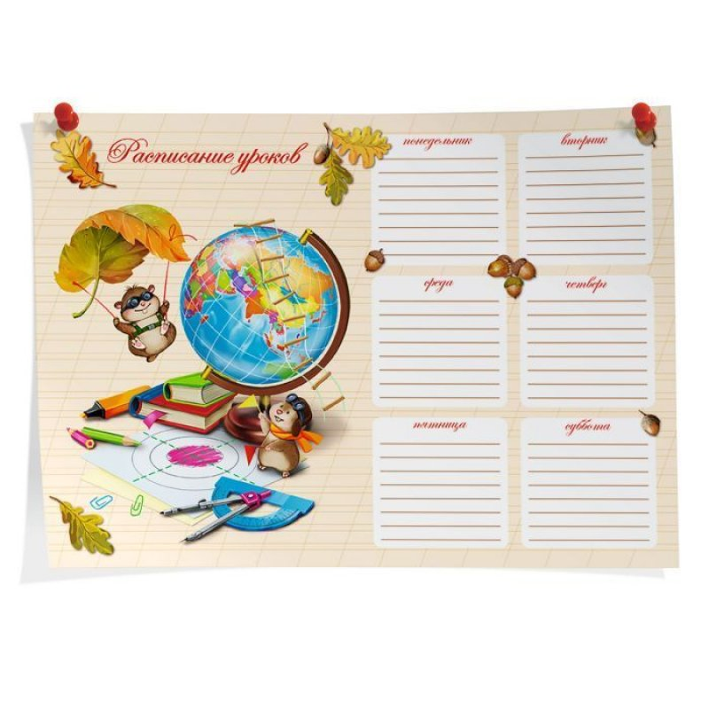 Расписание уроков А4 Глобус и хомячки