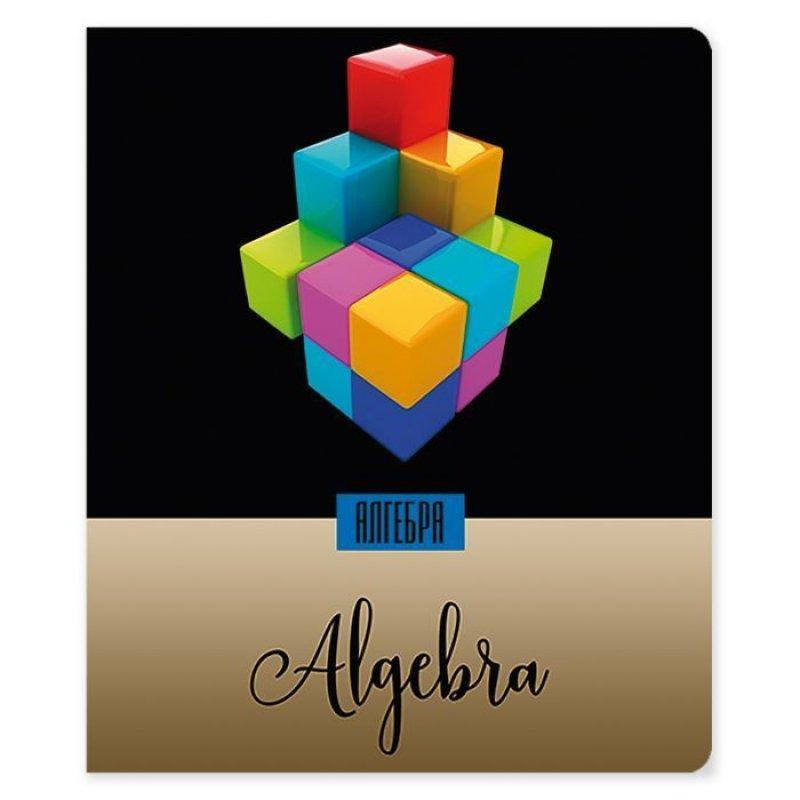 Тетрадь 48л Алгебра Мир в цвете