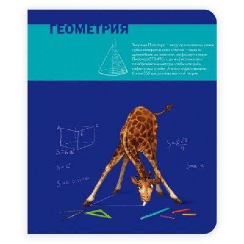 Тетрадь 48л Геометрия