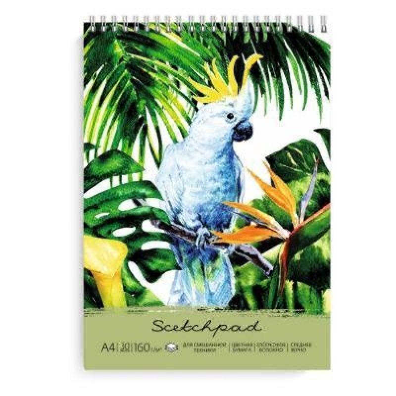 Альбом для пастели А4 30л Попугай