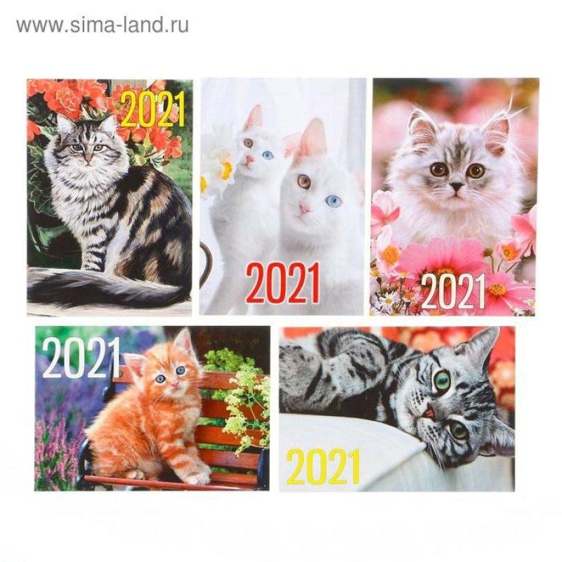 Календарь карманный 2021г Коты
