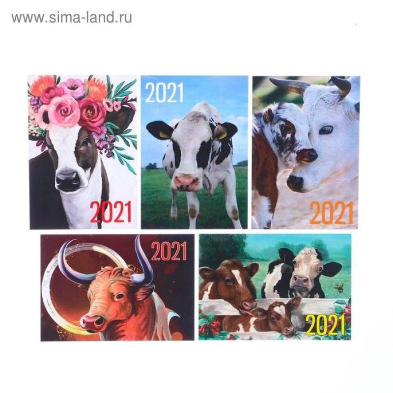 Календарь карманный 2021г Символ года