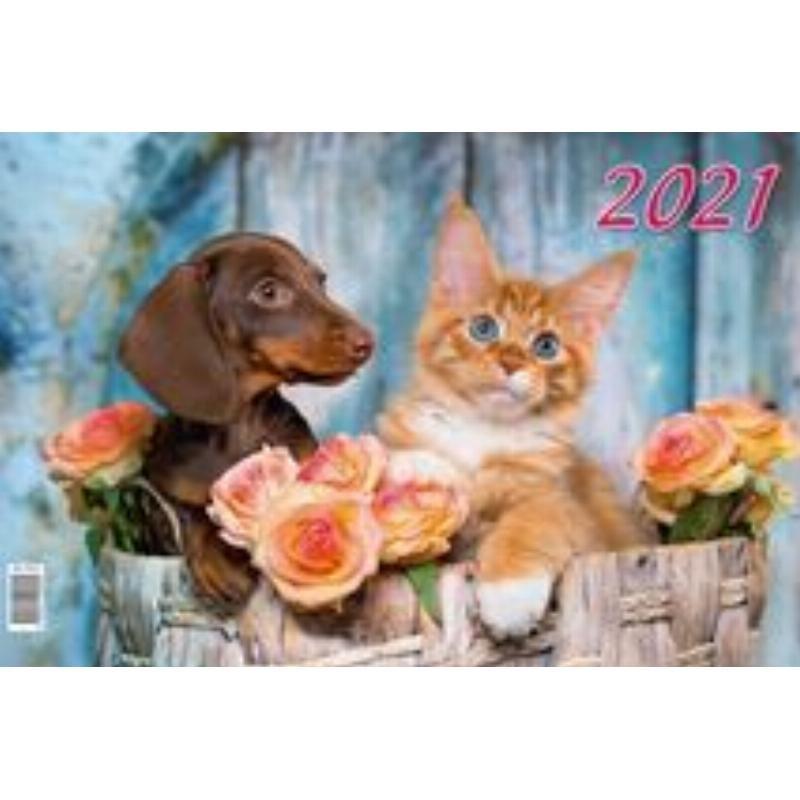 Календарь настенный 2021г 3-х блочный квартальный Котёнок и щенок