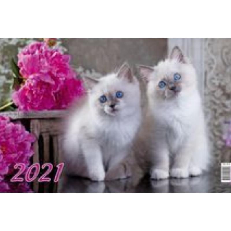 Календарь настенный 2021г 3-х блочный квартальный Котята