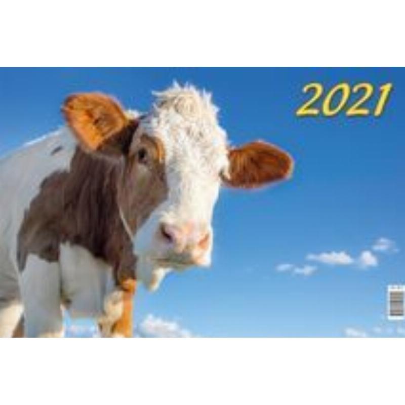 Календарь настенный 2021г 3-х блочный квартальный Символ года Вид1