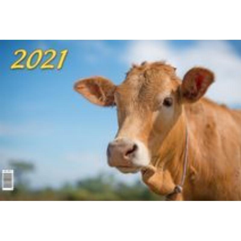 Календарь настенный 2021г 3-х блочный квартальный Символ года Вид2
