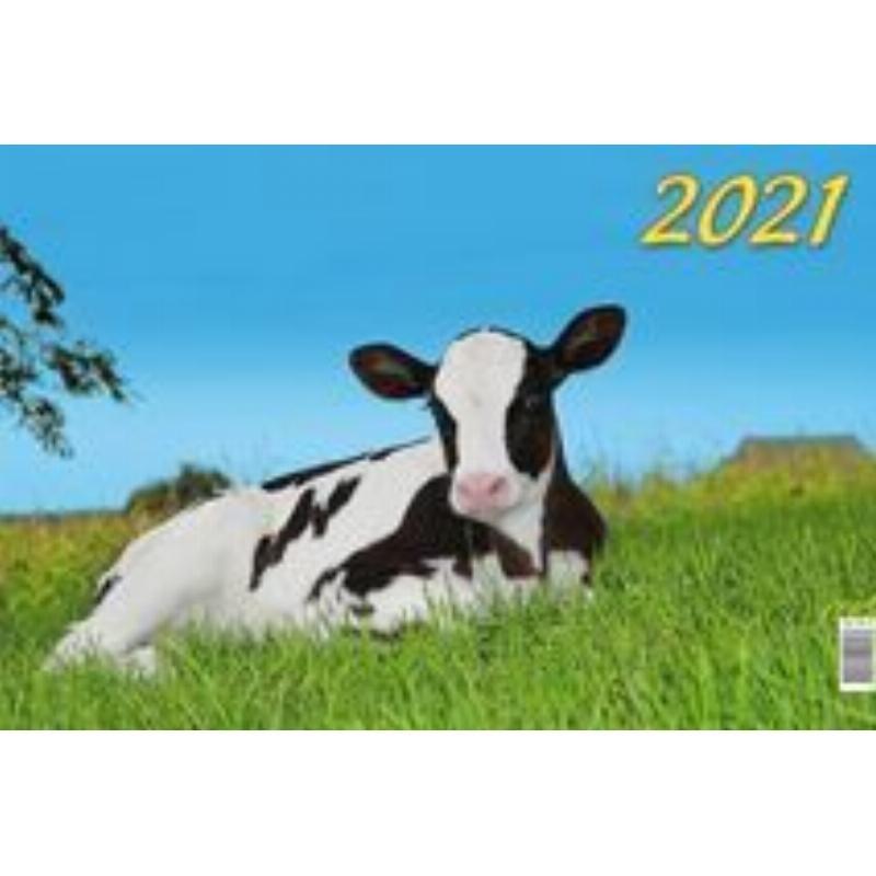 Календарь настенный 2021г 3-х блочный квартальный Символ года Вид3