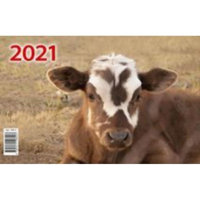 Календарь настенный 2021г 3-х блочный квартальный мини Символ года Вид 2