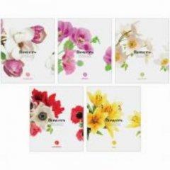 Тетрадь 96л Цветы Flowers клетка